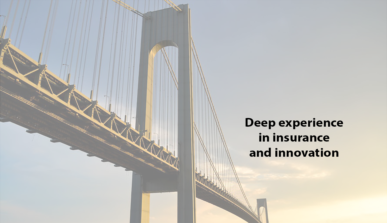 Deep experience in insurance and innovation